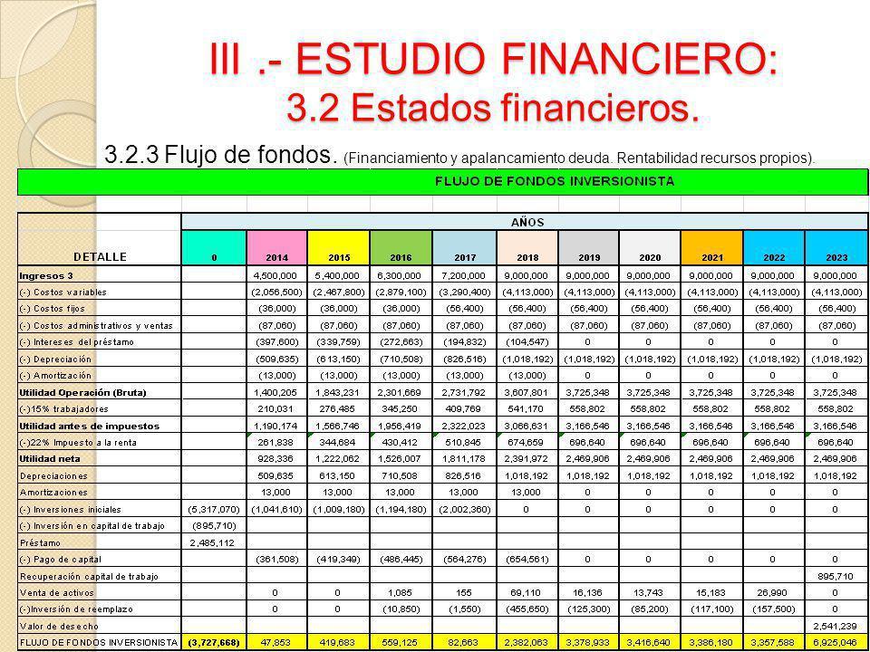 III.- ESTUDIO FINANCIERO: 3.2 Estados financieros. 3.2.3 Flujo de fondos. (Financiamiento y apalancamiento deuda. Rentabilidad recursos propios).