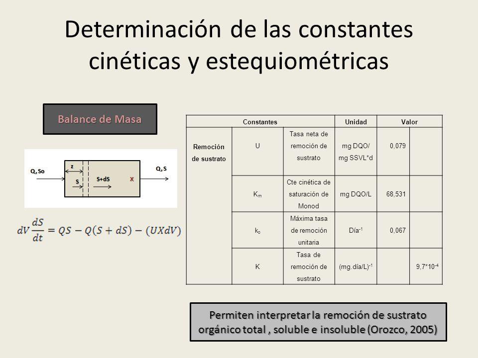 Determinación de las constantes cinéticas y estequiométricas ConstantesUnidadValor Remoción de sustrato U Tasa neta de remoción de sustrato mg DQO/ mg