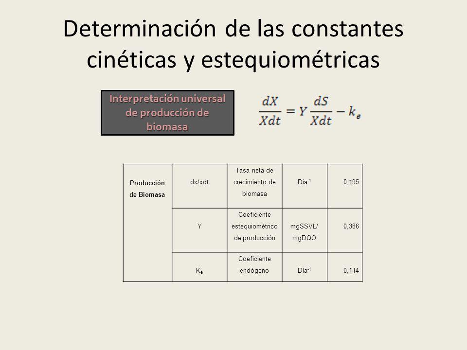 Determinación de las constantes cinéticas y estequiométricas Producción de Biomasa dx/xdt Tasa neta de crecimiento de biomasa Día -1 0,195 Y Coeficien