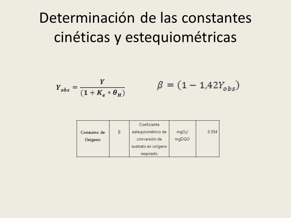 Determinación de las constantes cinéticas y estequiométricas Consumo de Oxígeno β Coeficiente estequiométrico de conversión de sustrato en oxígeno res