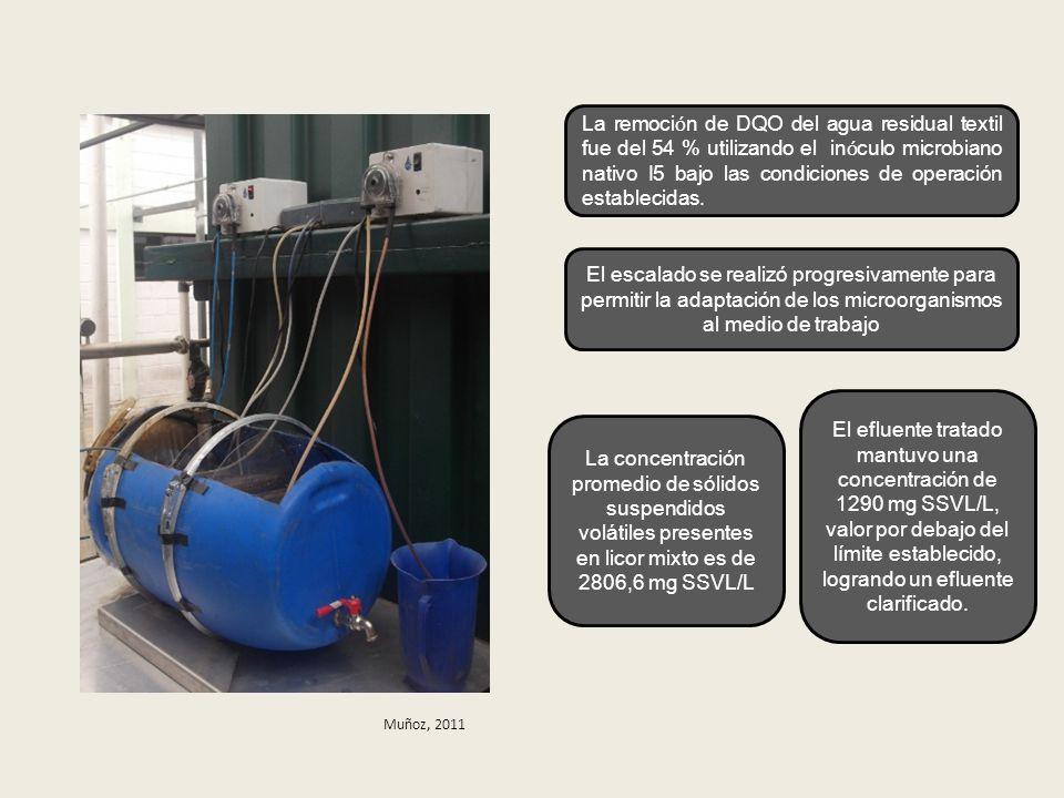 La remoci ó n de DQO del agua residual textil fue del 54 % utilizando el in ó culo microbiano nativo I5 bajo las condiciones de operación establecidas