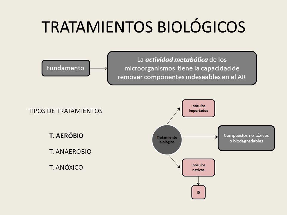 TRATAMIENTOS BIOLÓGICOS Fundamento La actividad metabólica de los microorganismos tiene la capacidad de remover componentes indeseables en el AR TIPOS