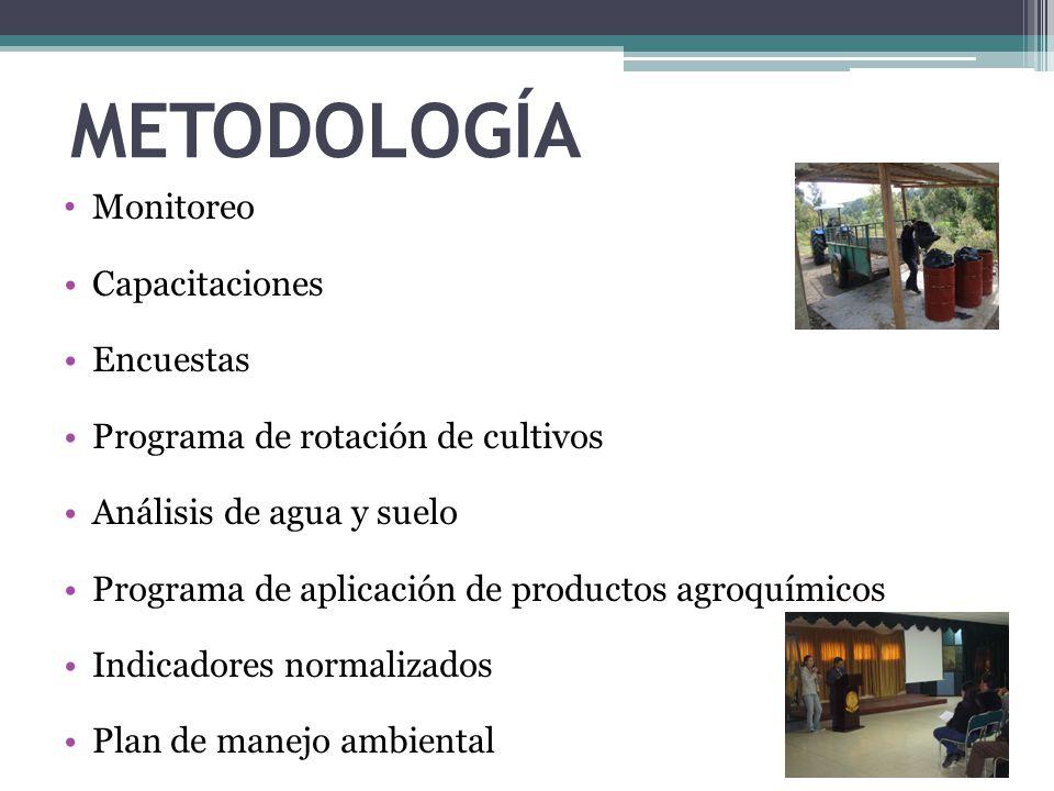 METODOLOGÍA Monitoreo Capacitaciones Encuestas Programa de rotación de cultivos Análisis de agua y suelo Programa de aplicación de productos agroquími