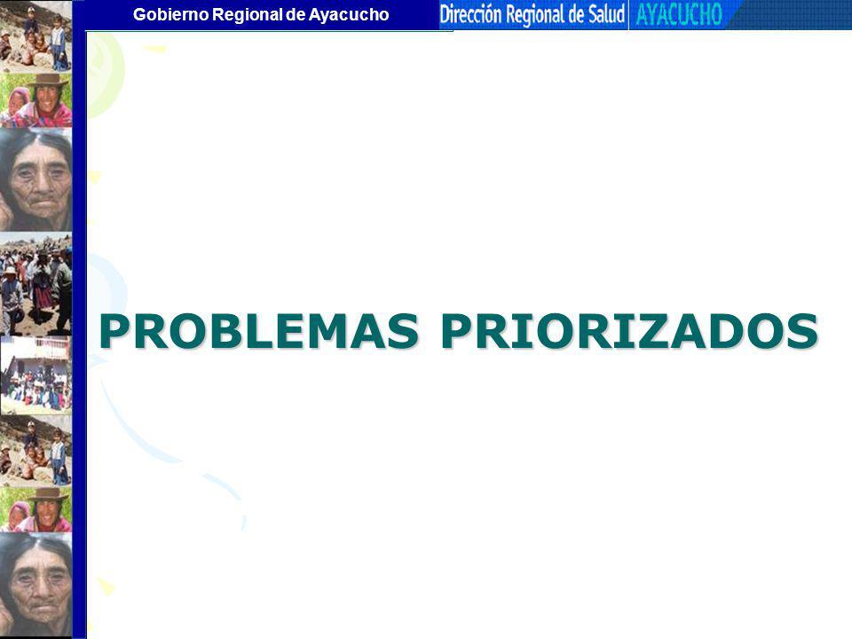 Gobierno Regional de Ayacucho PROBLEMAS PRIORIZADOS