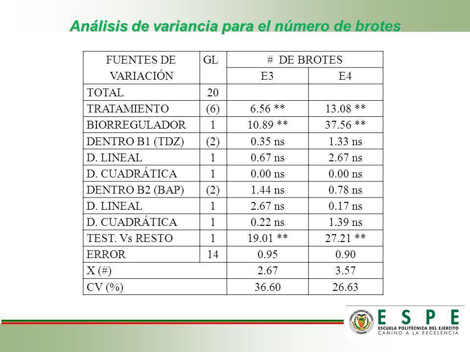 Análisis de variancia para el número de brotes FUENTES DE VARIACIÓN GL# DE BROTES E3E4 TOTAL20 TRATAMIENTO(6)6.56 **13.08 ** BIORREGULADOR110.89 **37.