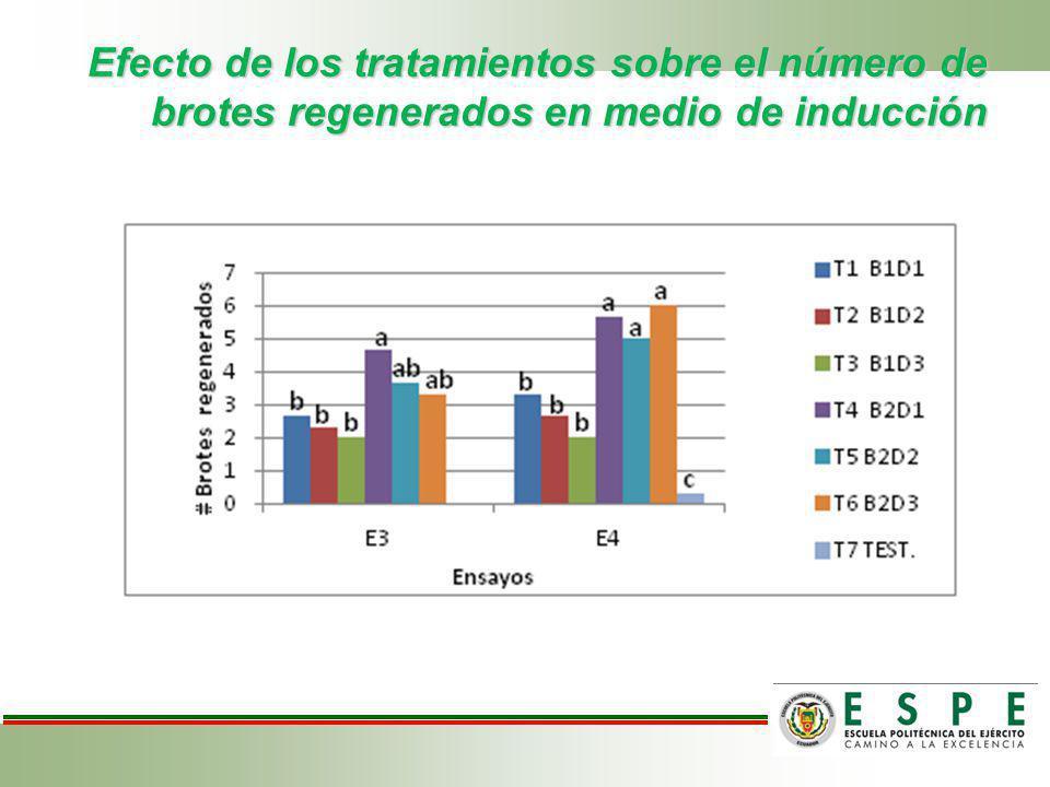 Efecto de los tratamientos sobre el número de brotes regenerados en medio de inducción