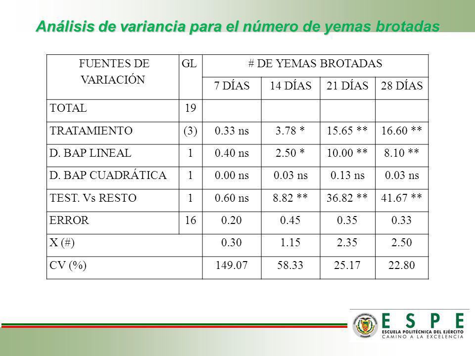 Análisis de variancia para el número de yemas brotadas FUENTES DE VARIACIÓN GL# DE YEMAS BROTADAS 7 DÍAS14 DÍAS21 DÍAS28 DÍAS TOTAL19 TRATAMIENTO(3)0.