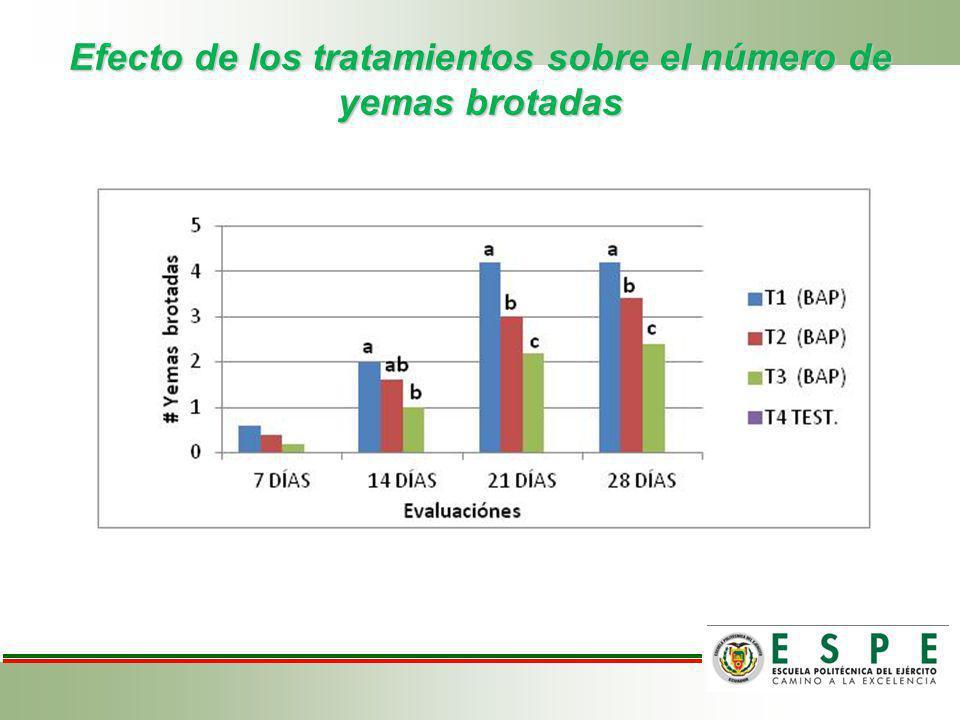 Efecto de los tratamientos sobre el número de yemas brotadas
