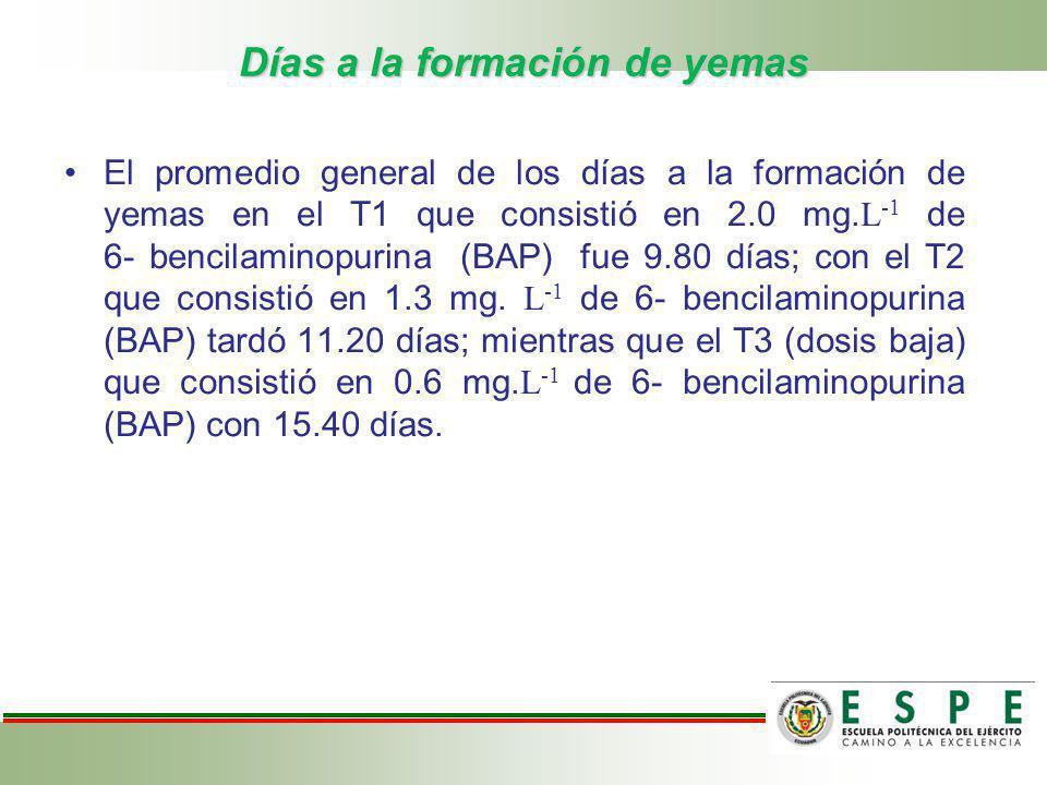 Días a la formación de yemas El promedio general de los días a la formación de yemas en el T1 que consistió en 2.0 mg. L -1 de 6- bencilaminopurina (B