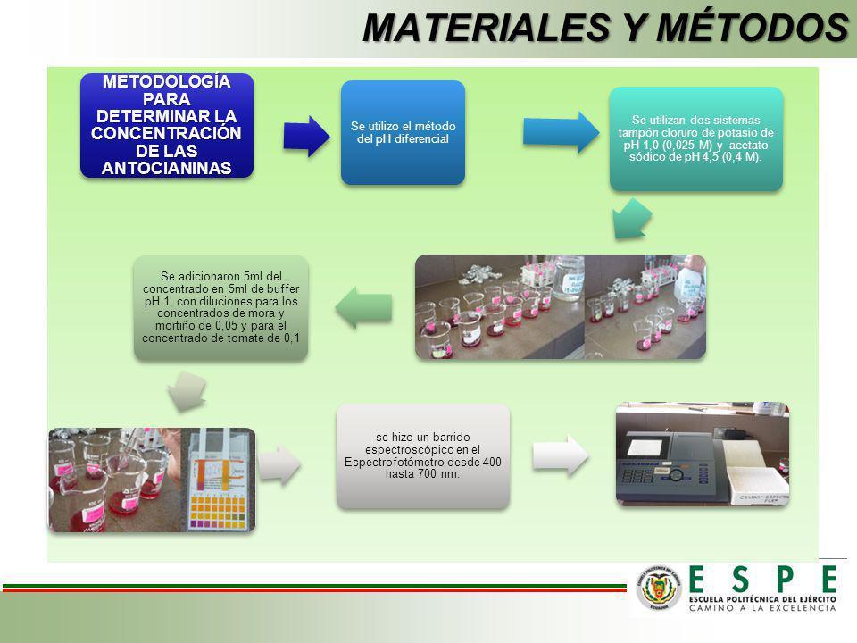 MATERIALES Y MÉTODOS METODOLOGÍA PARA DETERMINAR LA CONCENTRACIÓN DE LAS ANTOCIANINAS Se utilizo el método del pH diferencial Se utilizan dos sistemas