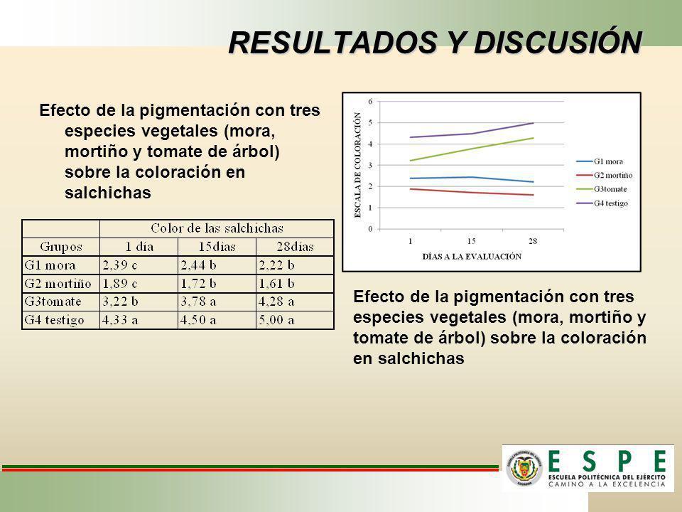 RESULTADOS Y DISCUSIÓN Efecto de la pigmentación con tres especies vegetales (mora, mortiño y tomate de árbol) sobre la coloración en salchichas