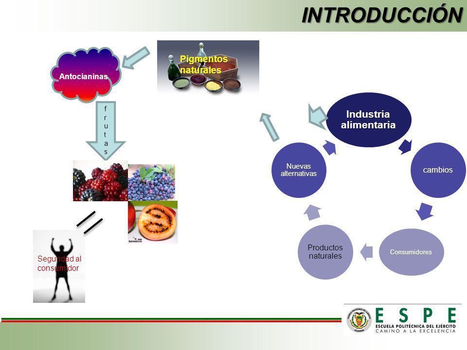 INTRODUCCIÓN Industria alimentaria cambios Consumidores Productos naturales Nuevas alternativas Pigmentos naturales Antocianinas frutasfrutas Segurida