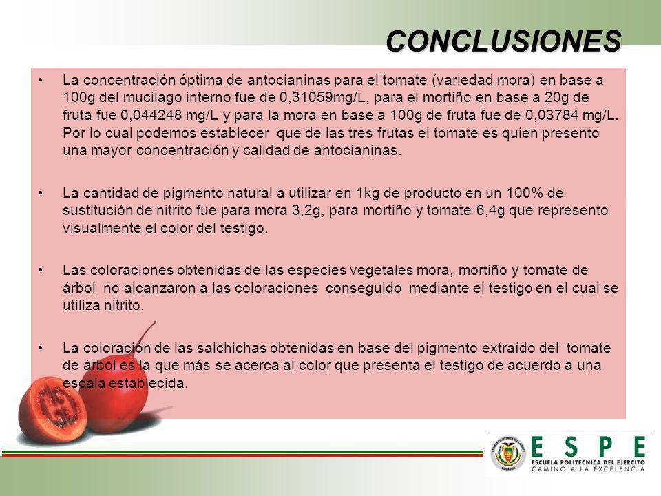 CONCLUSIONES La concentración óptima de antocianinas para el tomate (variedad mora) en base a 100g del mucilago interno fue de 0,31059mg/L, para el mo