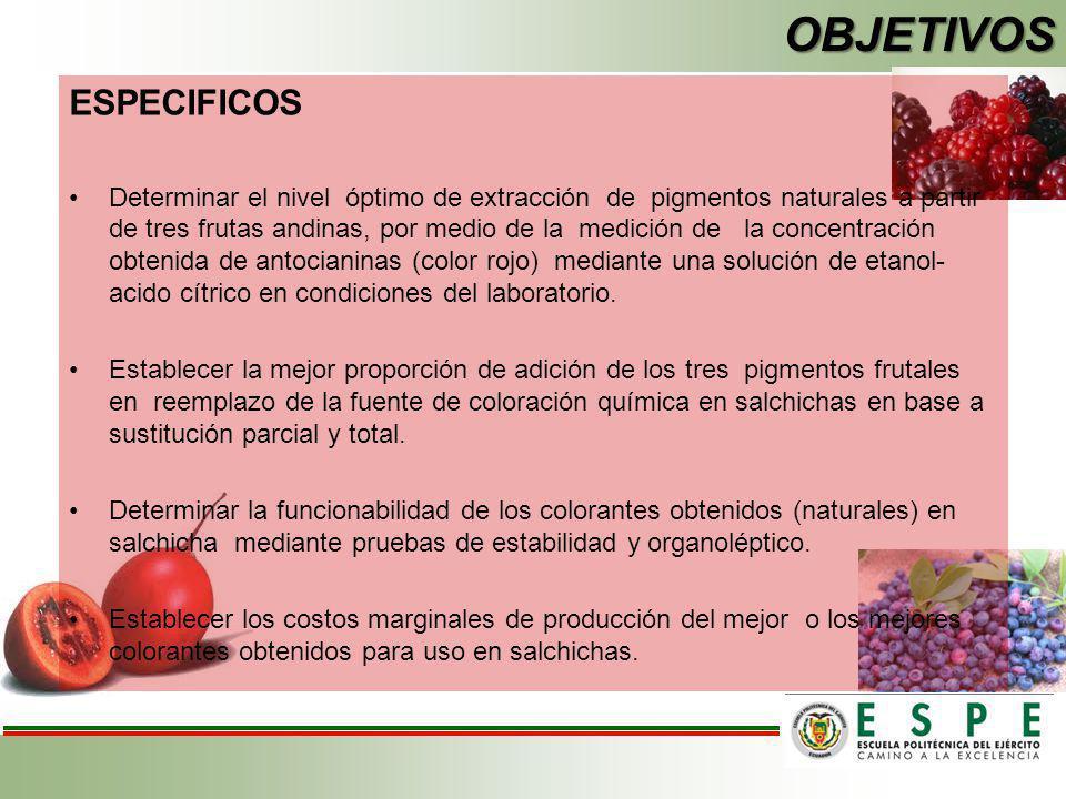 OBJETIVOS ESPECIFICOS Determinar el nivel óptimo de extracción de pigmentos naturales a partir de tres frutas andinas, por medio de la medición de la