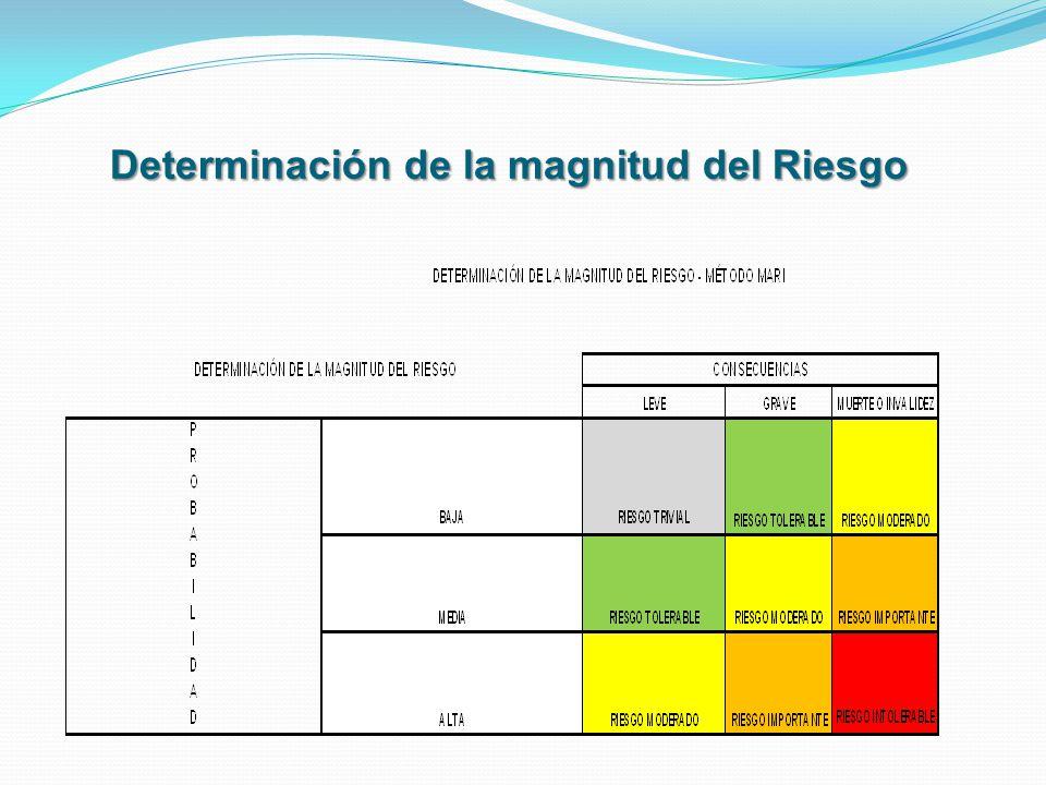 Determinación de la magnitud del Riesgo