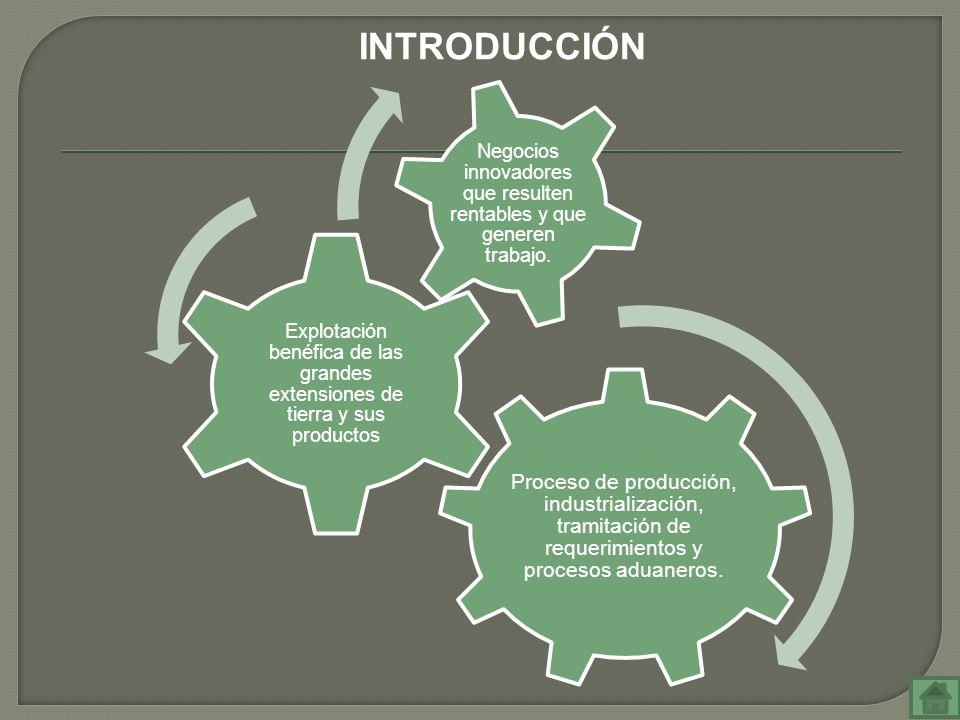 Proceso de producción, industrialización, tramitación de requerimientos y procesos aduaneros. Explotación benéfica de las grandes extensiones de tierr
