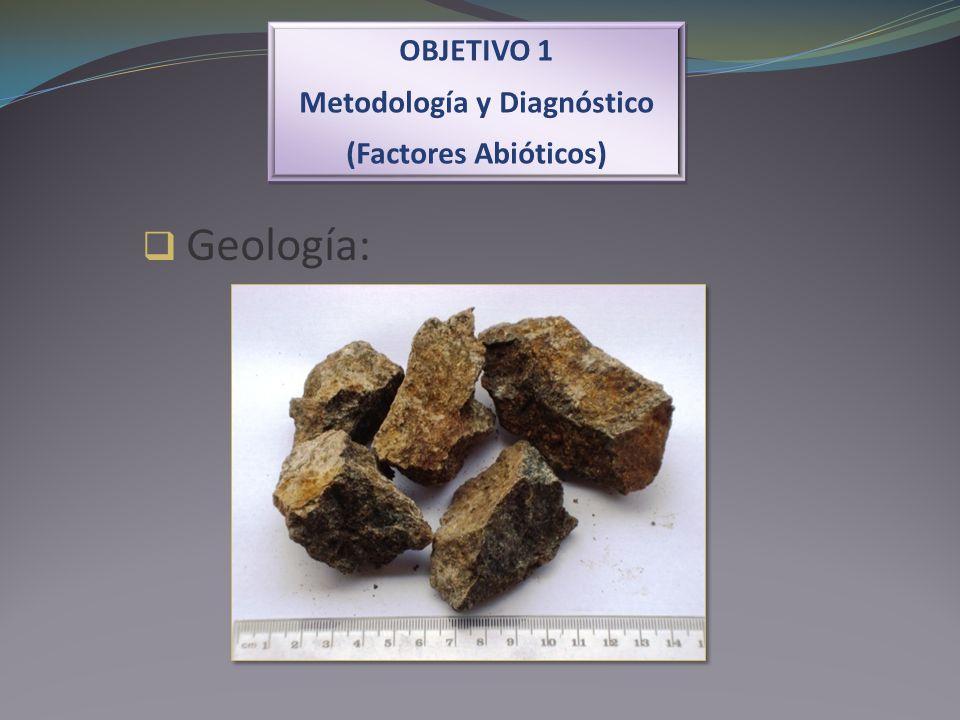 OBJETIVO 1 Metodología y Diagnóstico (Factores Abióticos) OBJETIVO 1 Metodología y Diagnóstico (Factores Abióticos) Geología: