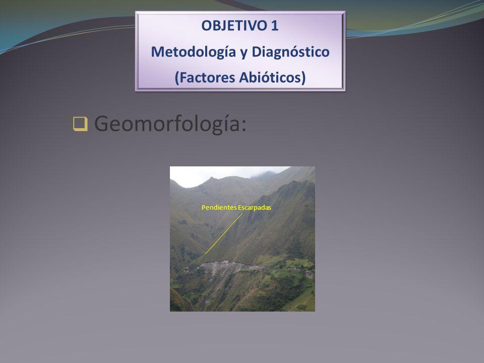 OBJETIVO 1 Metodología y Diagnóstico (Factores Abióticos) OBJETIVO 1 Metodología y Diagnóstico (Factores Abióticos) Geomorfología: Pendientes Escarpad