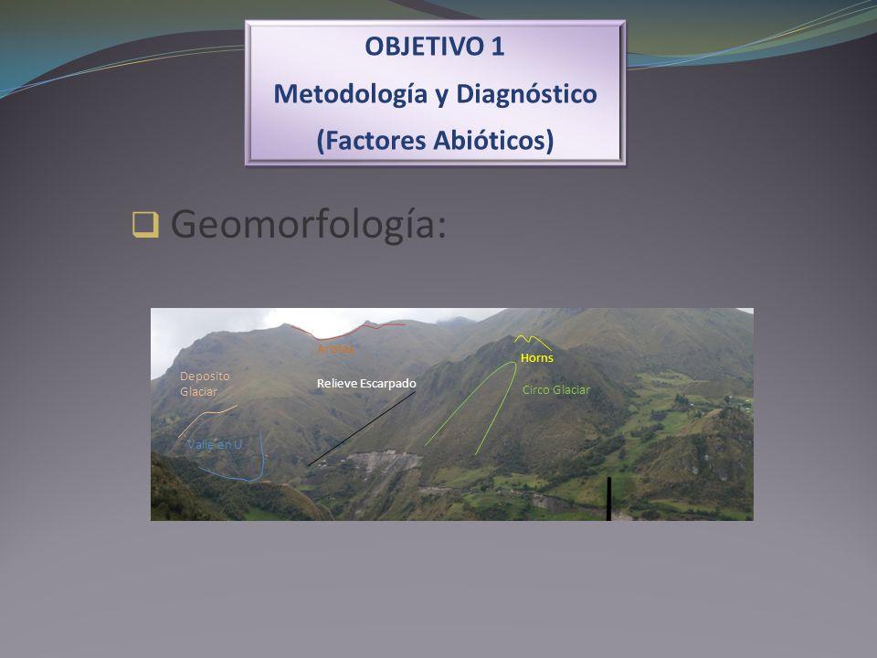 OBJETIVO 1 Metodología y Diagnóstico (Factores Abióticos) OBJETIVO 1 Metodología y Diagnóstico (Factores Abióticos) Geomorfología: Horns Circo Glaciar