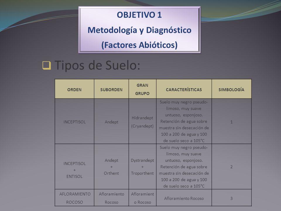 OBJETIVO 1 Metodología y Diagnóstico (Factores Abióticos) OBJETIVO 1 Metodología y Diagnóstico (Factores Abióticos) Tipos de Suelo: ORDENSUBORDEN GRAN