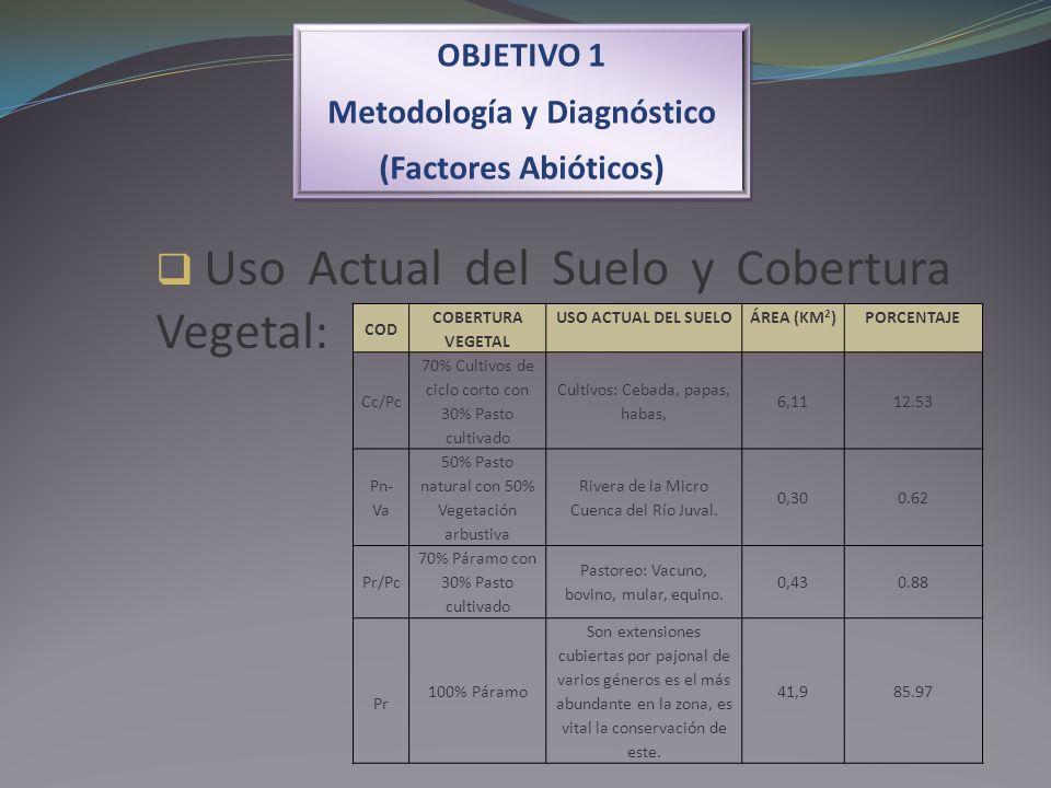 OBJETIVO 1 Metodología y Diagnóstico (Factores Abióticos) OBJETIVO 1 Metodología y Diagnóstico (Factores Abióticos) Uso Actual del Suelo y Cobertura V