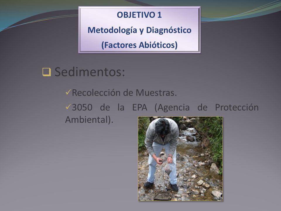 OBJETIVO 1 Metodología y Diagnóstico (Factores Abióticos) OBJETIVO 1 Metodología y Diagnóstico (Factores Abióticos) Sedimentos: Recolección de Muestra