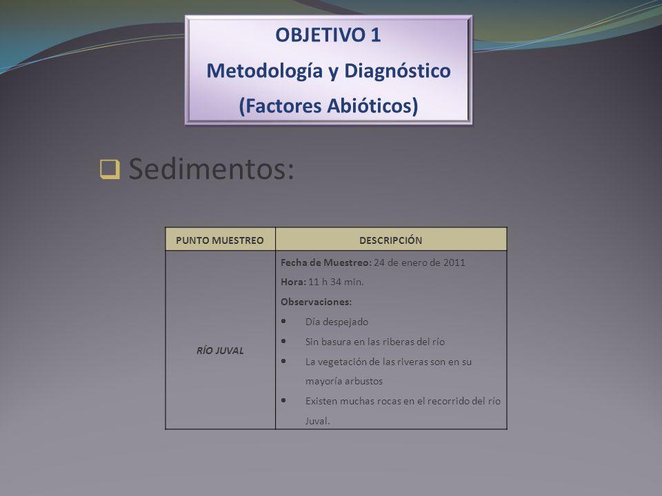 OBJETIVO 1 Metodología y Diagnóstico (Factores Abióticos) OBJETIVO 1 Metodología y Diagnóstico (Factores Abióticos) Sedimentos: PUNTO MUESTREODESCRIPC