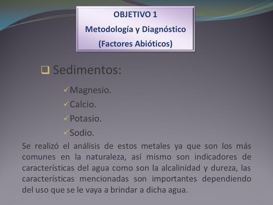 OBJETIVO 1 Metodología y Diagnóstico (Factores Abióticos) OBJETIVO 1 Metodología y Diagnóstico (Factores Abióticos) Sedimentos: Magnesio. Calcio. Pota