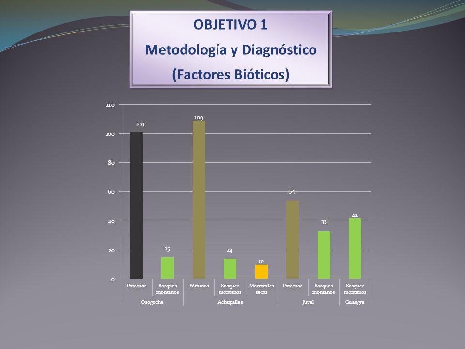 OBJETIVO 1 Metodología y Diagnóstico (Factores Bióticos) OBJETIVO 1 Metodología y Diagnóstico (Factores Bióticos) 101