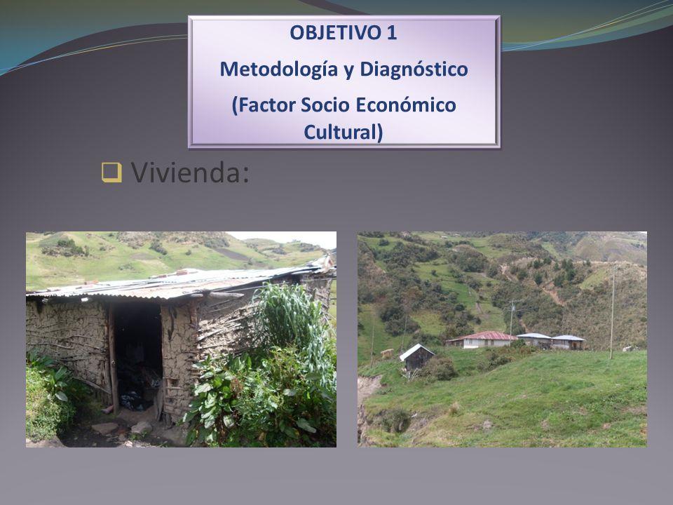 Vivienda : OBJETIVO 1 Metodología y Diagnóstico (Factor Socio Económico Cultural) OBJETIVO 1 Metodología y Diagnóstico (Factor Socio Económico Cultura