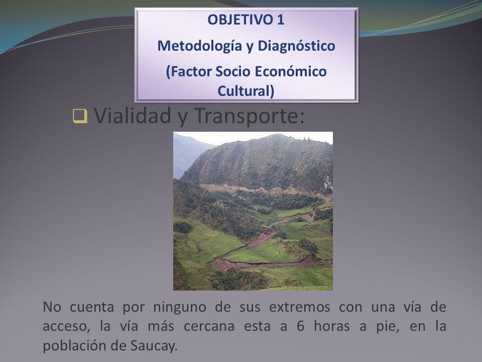 Vialidad y Transporte: OBJETIVO 1 Metodología y Diagnóstico (Factor Socio Económico Cultural) OBJETIVO 1 Metodología y Diagnóstico (Factor Socio Econó