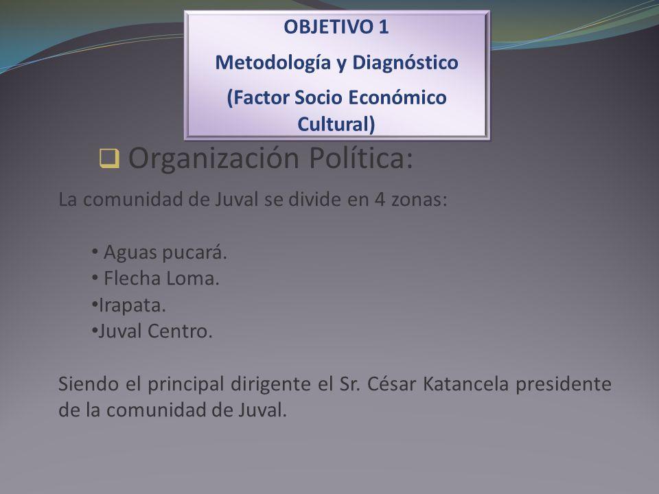 Organización Política: OBJETIVO 1 Metodología y Diagnóstico (Factor Socio Económico Cultural) OBJETIVO 1 Metodología y Diagnóstico (Factor Socio Econó