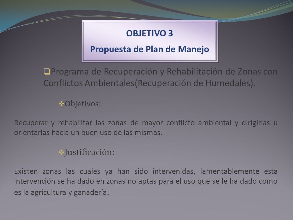 OBJETIVO 3 Propuesta de Plan de Manejo OBJETIVO 3 Propuesta de Plan de Manejo Programa de Recuperación y Rehabilitación de Zonas con Conflictos Ambien