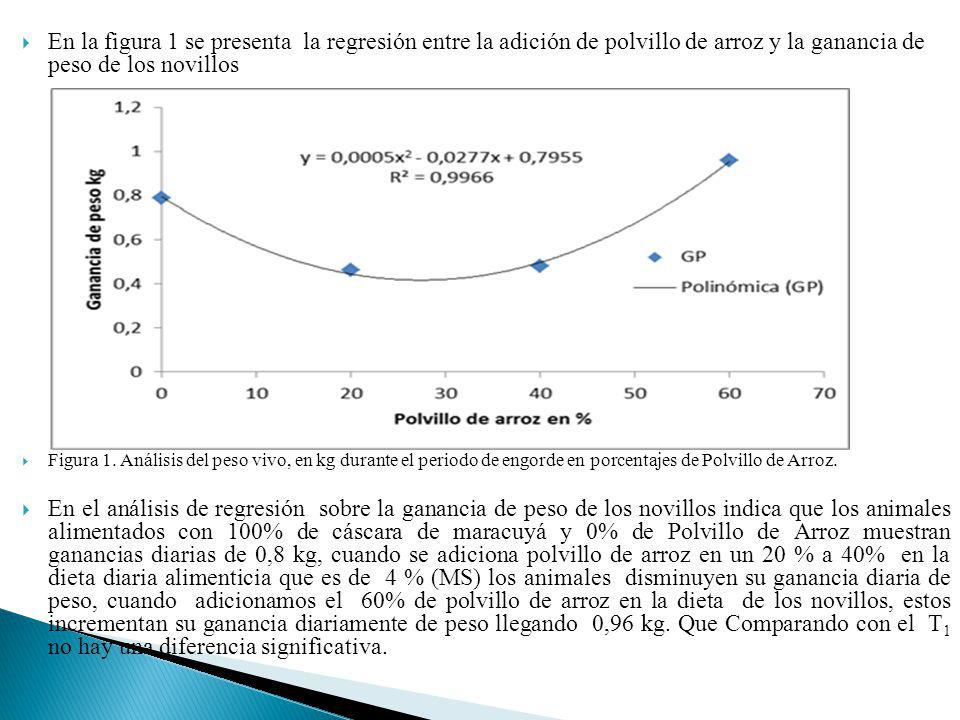 En la figura 1 se presenta la regresión entre la adición de polvillo de arroz y la ganancia de peso de los novillos Figura 1. Análisis del peso vivo,