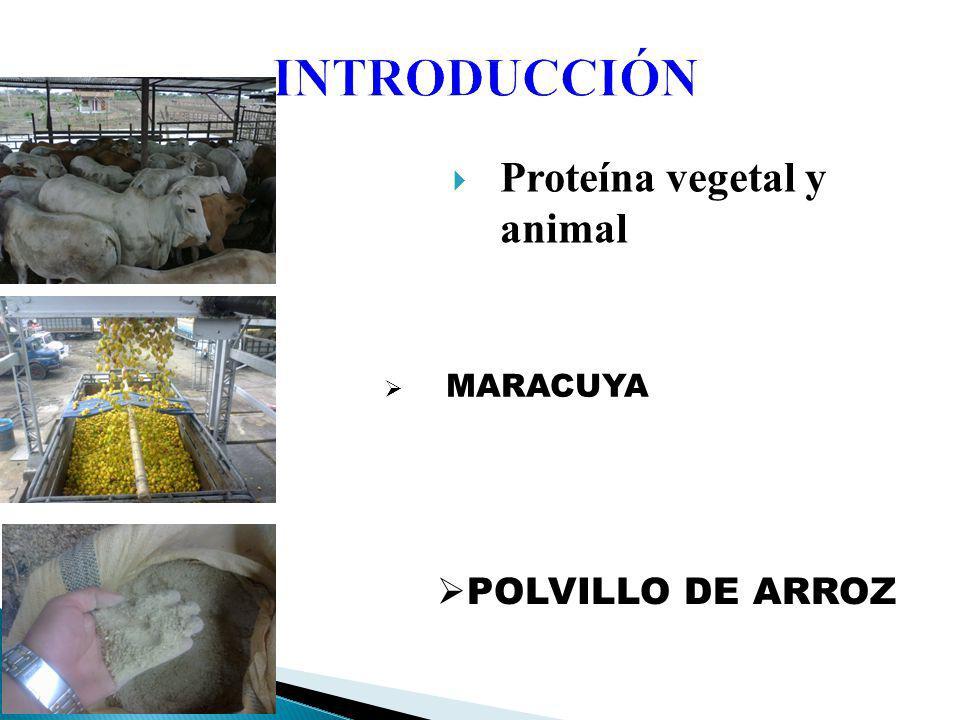 Proteína vegetal y animal INTRODUCCIÓN MARACUYA POLVILLO DE ARROZ