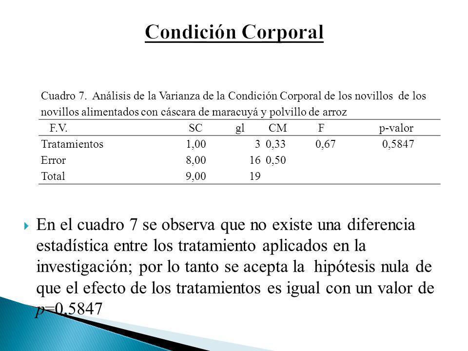 En el cuadro 7 se observa que no existe una diferencia estadística entre los tratamiento aplicados en la investigación; por lo tanto se acepta la hipó
