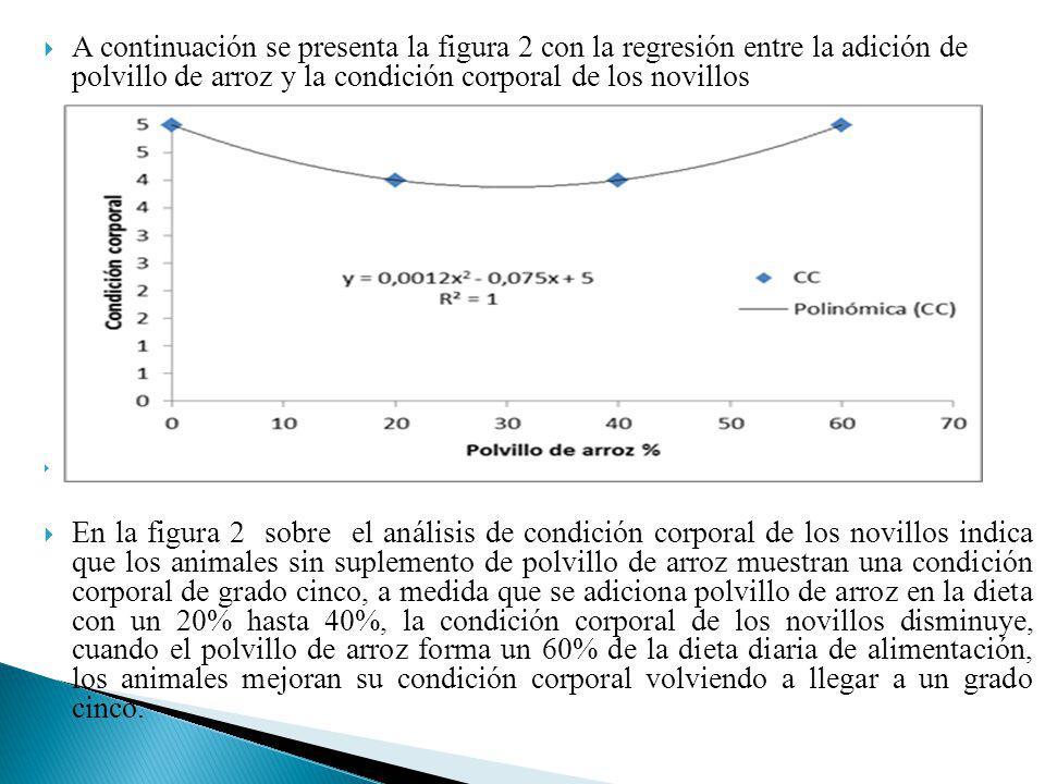 A continuación se presenta la figura 2 con la regresión entre la adición de polvillo de arroz y la condición corporal de los novillos Figura 2. Anális