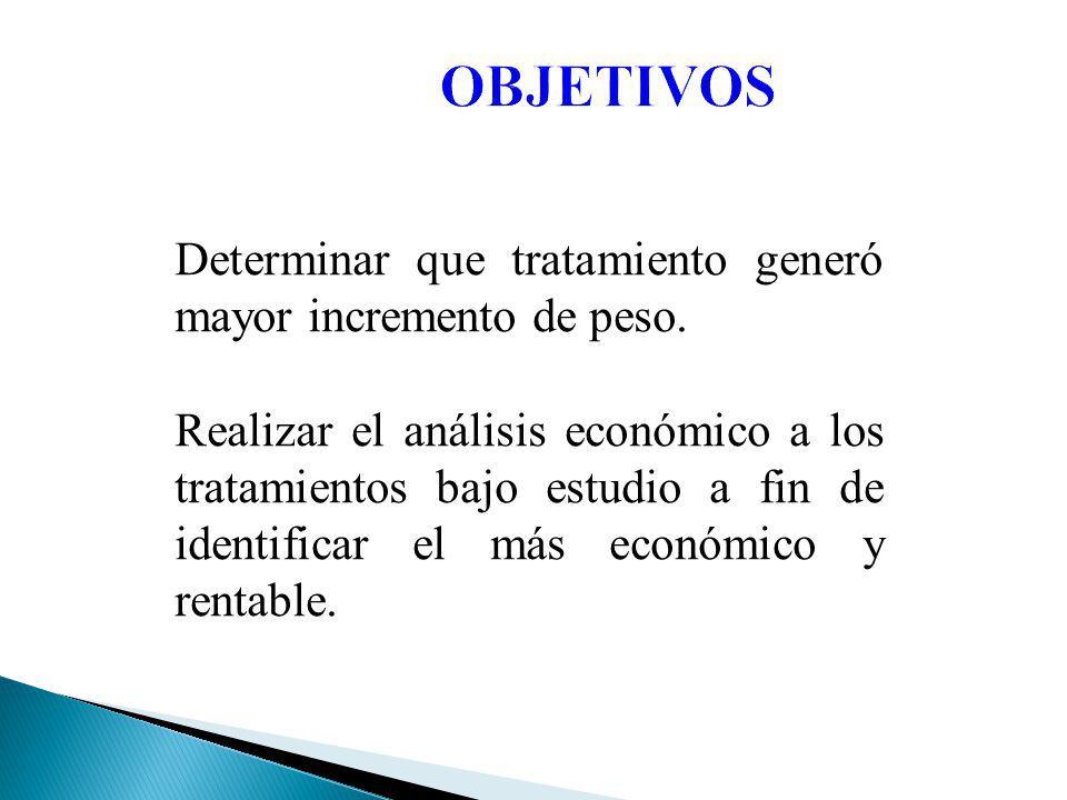 REVISION DE LITERATURA