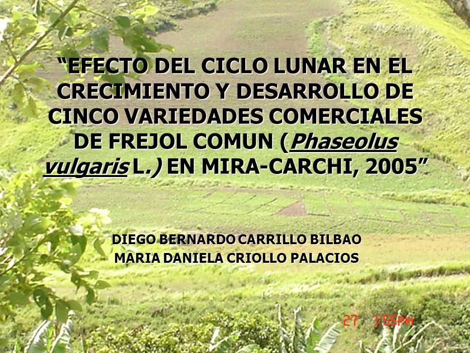 EFECTO DEL CICLO LUNAR EN EL CRECIMIENTO Y DESARROLLO DE CINCO VARIEDADES COMERCIALES DE FREJOL COMUN (Phaseolus vulgaris L.) EN MIRA-CARCHI, 2005 DIE