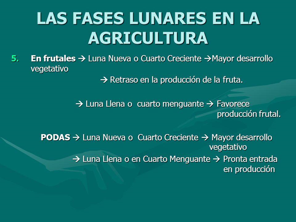 LAS FASES LUNARES EN LA AGRICULTURA 5.En frutales Luna Nueva o Cuarto Creciente Mayor desarrollo vegetativo Retraso en la producción de la fruta. Retr