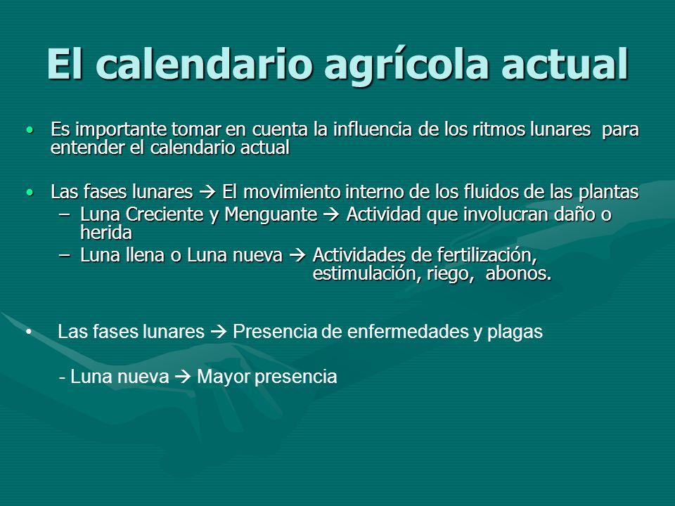 El calendario agrícola actual Es importante tomar en cuenta la influencia de los ritmos lunares para entender el calendario actualEs importante tomar