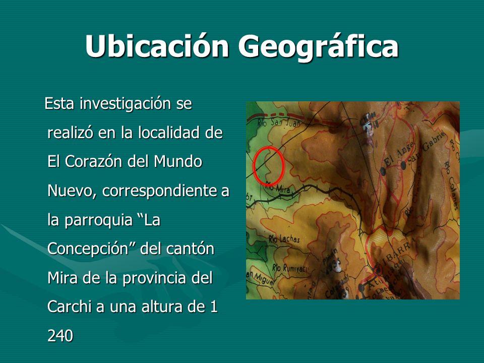 Ubicación Geográfica Ubicación Geográfica Esta investigación se realizó en la localidad de El Corazón del Mundo Nuevo, correspondiente a la parroquia