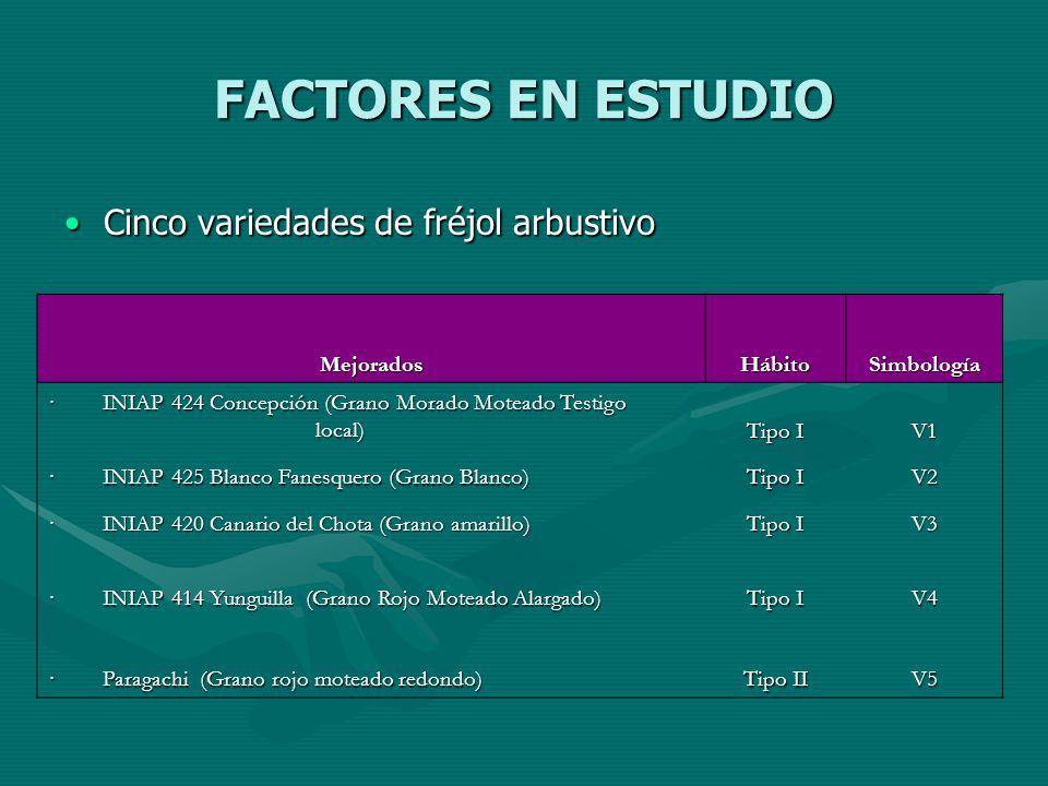 FACTORES EN ESTUDIO Cinco variedades de fréjol arbustivoCinco variedades de fréjol arbustivo MejoradosHábitoSimbología · INIAP 424 Concepción (Grano M