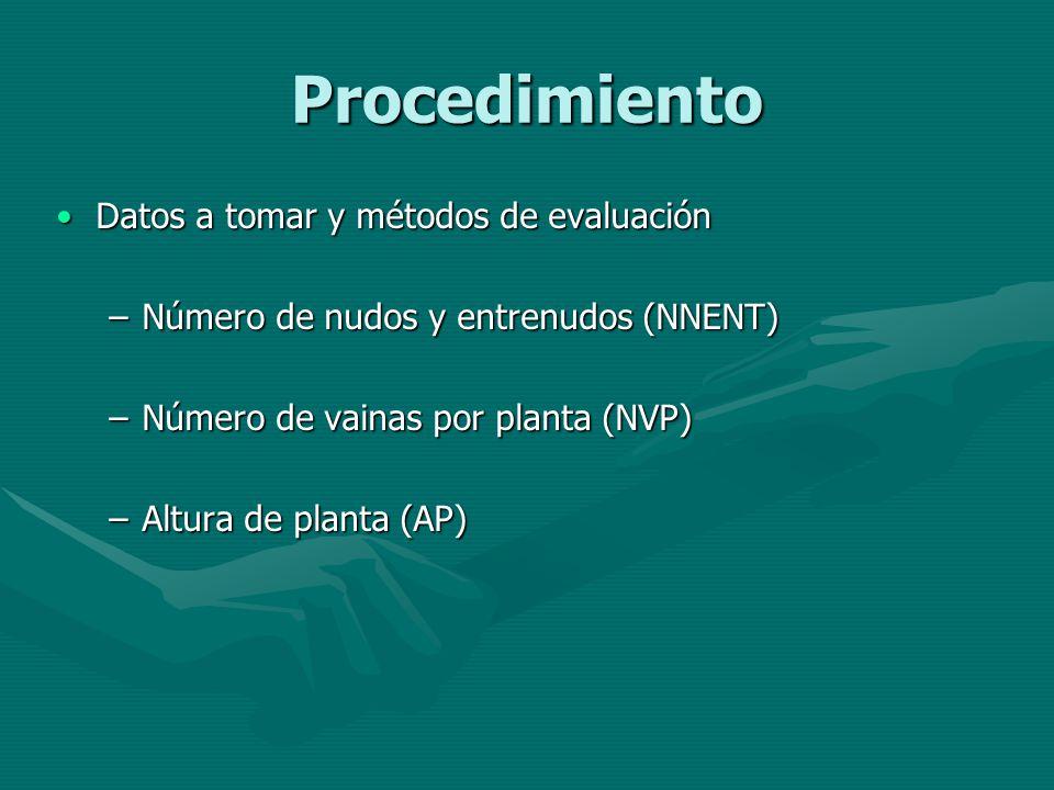 Procedimiento Datos a tomar y métodos de evaluaciónDatos a tomar y métodos de evaluación –Número de nudos y entrenudos (NNENT) –Número de vainas por p