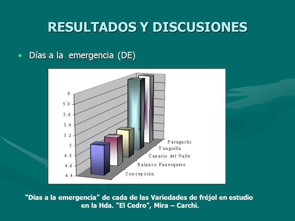 RESULTADOS Y DISCUSIONES Días a la emergencia (DE)Días a la emergencia (DE) Días a la emergencia de cada de las Variedades de fréjol en estudio en la
