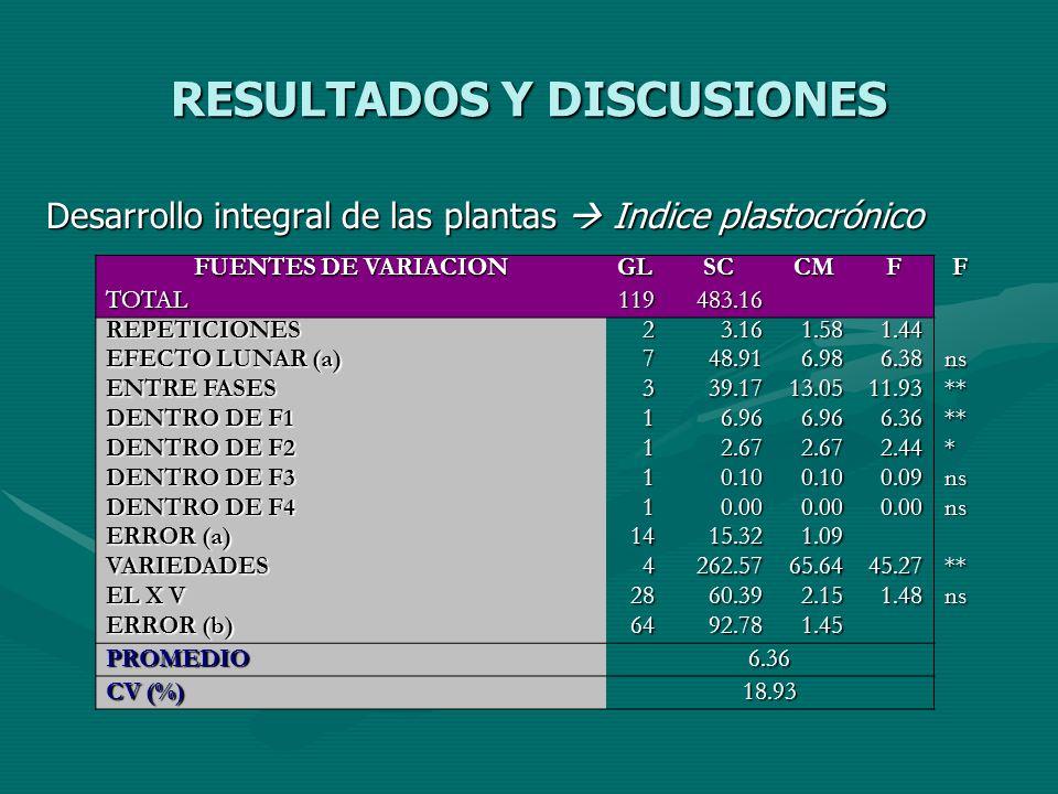 RESULTADOS Y DISCUSIONES Desarrollo integral de las plantas Indice plastocrónico FUENTES DE VARIACION GLSCCMFF TOTAL119483.16 REPETICIONES23.161.581.4