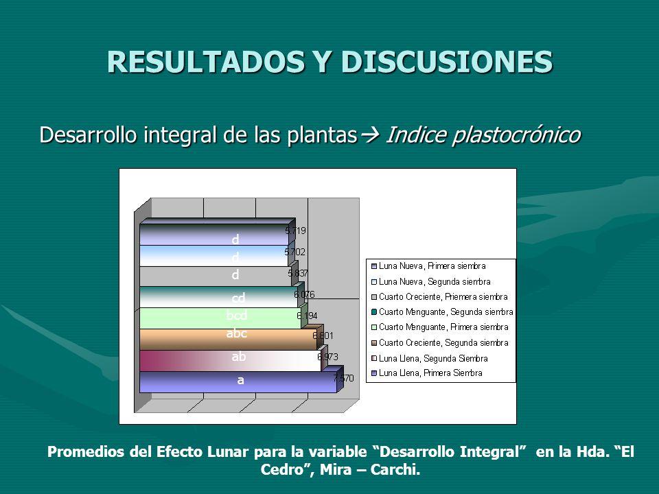 RESULTADOS Y DISCUSIONES Desarrollo integral de las plantas Indice plastocrónico Desarrollo integral de las plantas Indice plastocrónico a ab abc bcd
