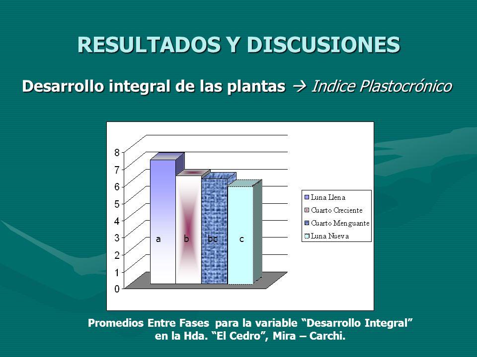 RESULTADOS Y DISCUSIONES Desarrollo integral de las plantas Indice Plastocrónico abbcc Promedios Entre Fases para la variable Desarrollo Integral en l