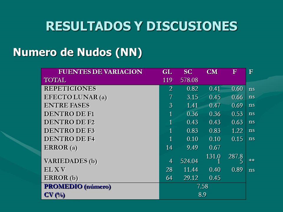 RESULTADOS Y DISCUSIONES Numero de Nudos (NN) FUENTES DE VARIACION GLSCCMFF TOTAL119578.08 REPETICIONES20.820.410.60ns EFECTO LUNAR (a) 73.150.450.66