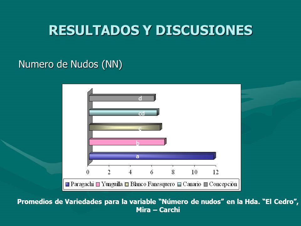 RESULTADOS Y DISCUSIONES Numero de Nudos (NN) a b c cd d Promedios de Variedades para la variable Número de nudos en la Hda. El Cedro, Mira – Carchi